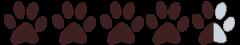Earthz Pet - Paw Prints_Brown 4.5